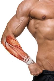 Ćwiczenia na przedramiona