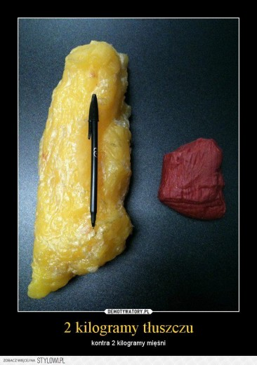 waga stoi? 2 kilogramy tłuszczu kontra 2 kg mięsni